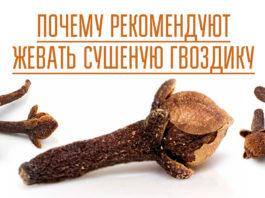 Почему рекомендуют жевать сушеную гвоздику