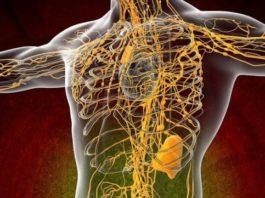 Ваша лимфа забита токсинами, если у вас есть эти 7 симптомов! Смотри 10 способов очистки!
