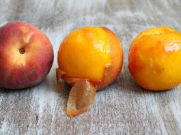 Персик задерживает старение организма и защищает от злокачественных опухолей!