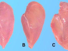 Если ты обнаружил на куриной грудке белые полосы, срочно сделай так…