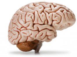 Благодаря этим упражнениям вы не потеряете ясность мышления даже в глубокой старости