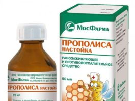 Настойка прополиса лечит от 100 болезней. Простое лекарство — настоящее золото!